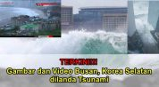 gambar dan video tsunami di busan korea