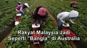 rakyat malaysia