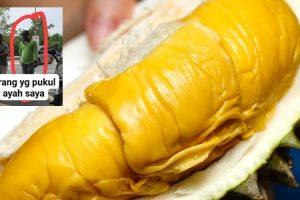 durian musang king